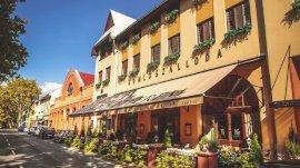 Komló Hotel Gyula  - Előfoglalás akció - előfoglalási akció
